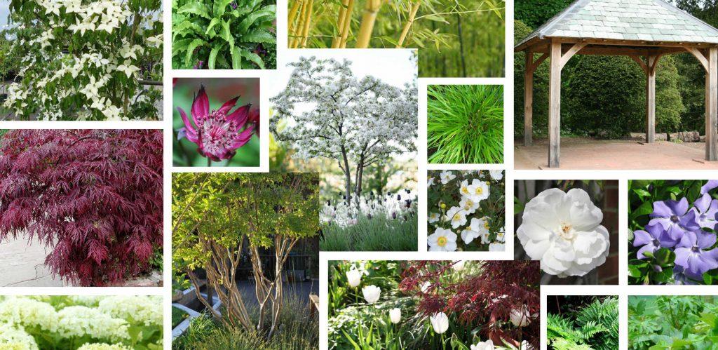 Bea Garden